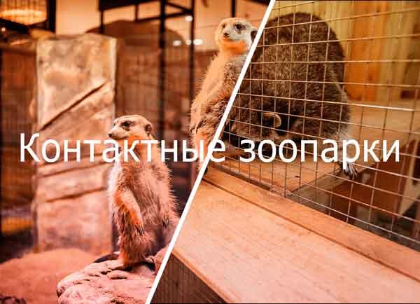 контактные зоопарки