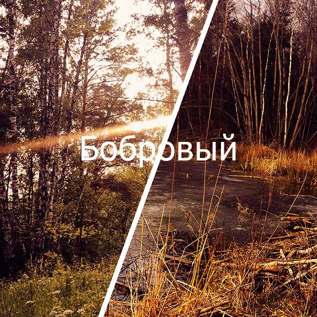 бобровый